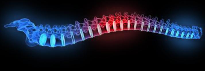 X-Rays in Macomb MI
